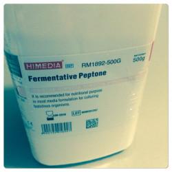 Пептон ферментативный